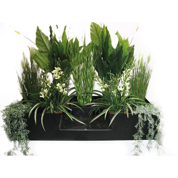 filtreco pflanzen filter medium koi. Black Bedroom Furniture Sets. Home Design Ideas